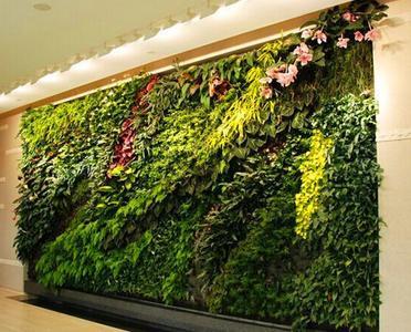 绿植墙手绘图片
